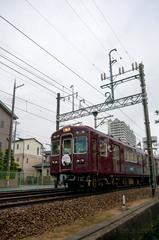 DSC08430.jpg