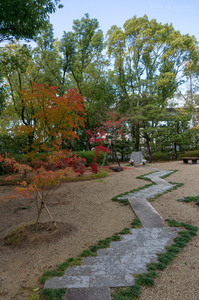 Kyoto03_RiceShower02.jpg